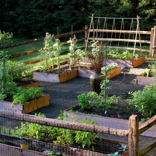 Photo of a traditional garden in New York with a vegetable garden.