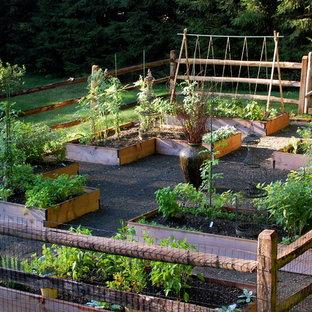 75 Beautiful Vegetable Garden Landscape Pictures Ideas February 2021 Houzz