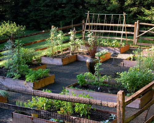 Design ideas for a traditional landscaping in New York with a vegetable  garden. - Raised Vegetable Garden Layout Houzz