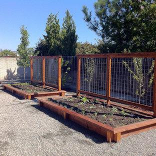 Raised Garden Bed with Trellis