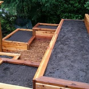 Свежая идея для дизайна: солнечный, летний огород на участке среднего размера на склоне в стиле кантри с освещенностью и мульчированием - отличное фото интерьера