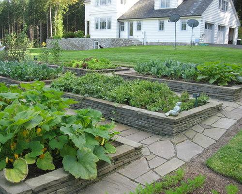 Raised Bed Vegetable Garden Layout | Houzz
