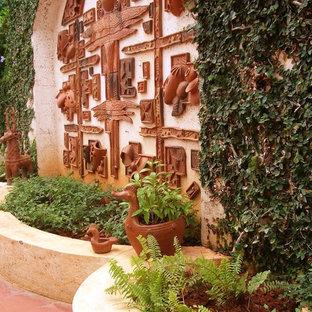 Backyard garden in Bengaluru with a vertical garden.