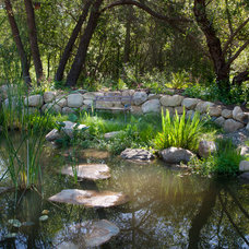Mediterranean Landscape by Lane Goodkind Landscape Architect