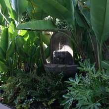 Tropical Privacy