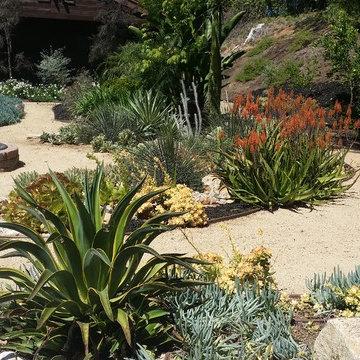 Rancho San Diego Mediterranean Garden