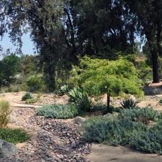 Mediterranean Landscape by Letz Design Landsape