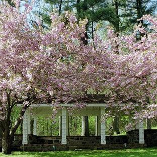 Inredning av en klassisk bakgård på våren