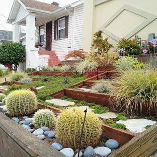 Inspiration for a small contemporary partial sun front yard concrete paver formal garden in San Francisco for summer.