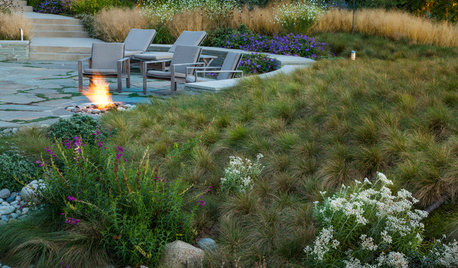 Get Year-Round Good Looks With Matrix Planting in Your Garden