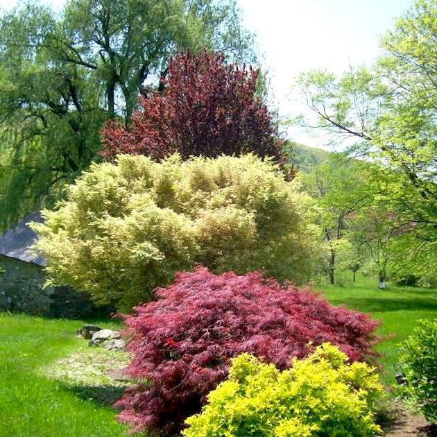 Le Sueur Landscape Design Washington Dc Landscape