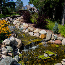 Traditional Landscape by RemWhirl Architecture & Landscape Design