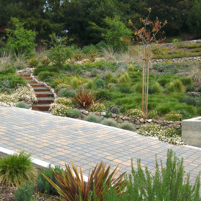 Photo of a contemporary retaining wall landscape in San Francisco.