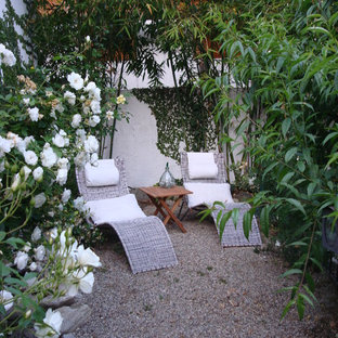Photo of a small contemporary backyard gravel landscaping in Los Angeles.