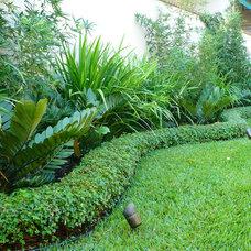 Tropical Landscape by C.Tarté Landscape Design