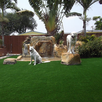 Residential Artificial Grass Lawn Pictures
