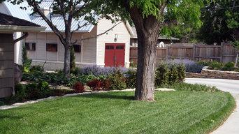 Residential Backyard Redesign