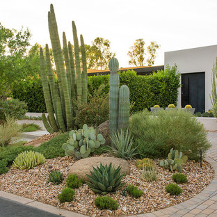 Inspiration for a large contemporary drought-tolerant and full sun front yard mulch garden path in Phoenix.