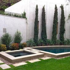 Traditional Landscape by Environs Landscape Architecture, Inc.