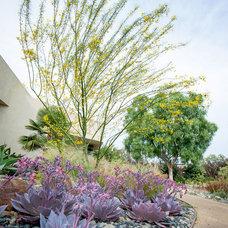 Modern Landscape by Environs Landscape Architecture, Inc.