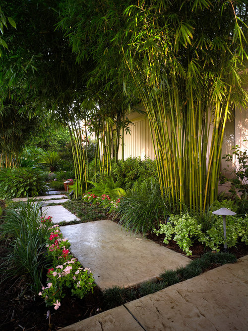 Tropical garden design ideas renovations photos for Garden design ideas houzz