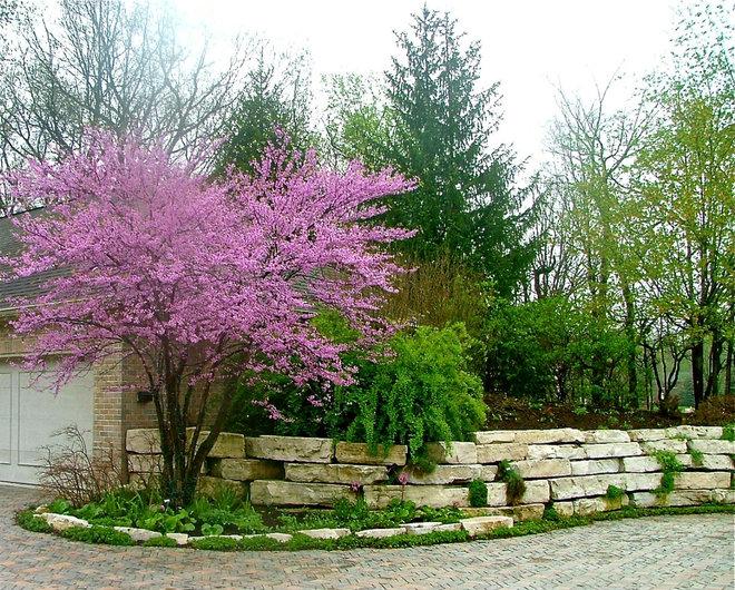 Классический Сад by The American Gardener, LLC