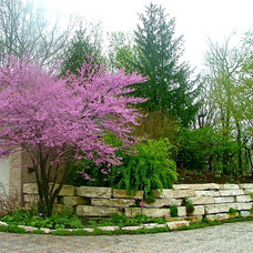 traditional landscape by The American Gardener, LLC