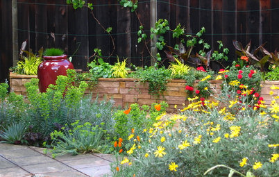 Houzz Call: Please Show Us Your Summer Garden!