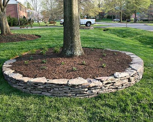 Landscaping Ideas Around Oak Trees : Ideas for dining rooms landscaping tree rings orlando fl