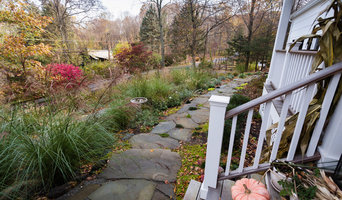 Rethinking the Front Lawn - Try a Native Perennial Garden Instead!