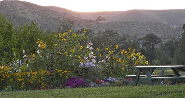 Farmhouse Landscape by Sarah Greenman