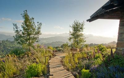 Gartenstile kurz erklärt: Der naturnahe Garten