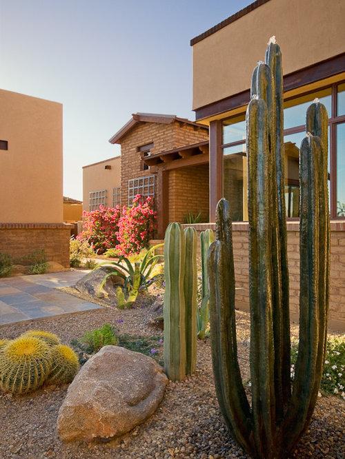 Cactus Landscape Houzz