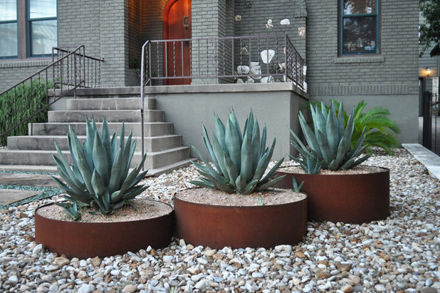 Cactus and succulent containers are ideal for hot sunny spots for Sunny landscape designs