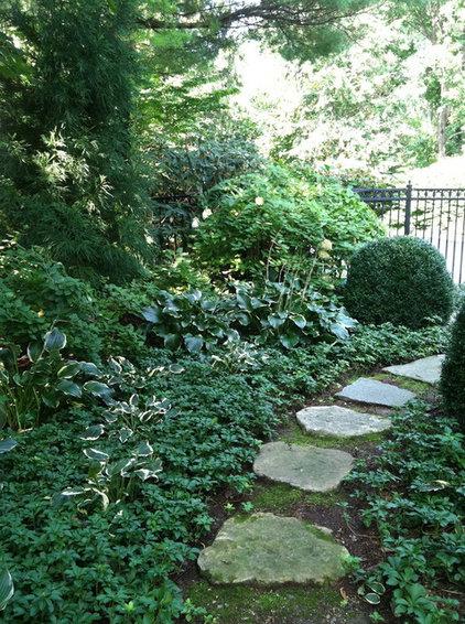 Traditional Landscape by Rock Spring Design Group LLC (David Verespy, ASLA)