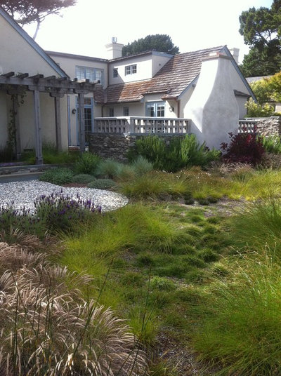 Water-Saving Landscaping Ideas For Traditional Homes