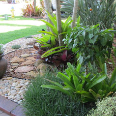 Tropical Landscape Rock Garden