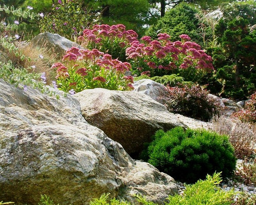 rock garden design photos - Rock Landscaping Design Ideas