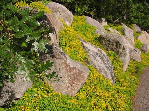 Ideas para el jard n construye una rocalla para terrenos for Ideas jardin desnivel