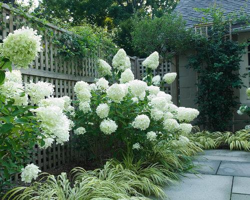 Small Flower Garden Designs | Houzz