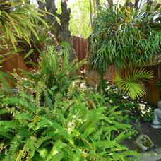 Tropical Landscape by Tim Nelson   Willis Allen Real Estate