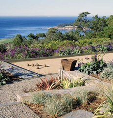 contemporary landscape by Ron Herman Landscape Architect