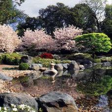 Asian Landscape by Ron Herman Landscape Architect