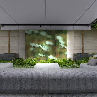Foto di un piccolo giardino formale contemporaneo sul tetto con un giardino in vaso e pedane