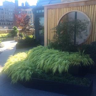 Esempio di un giardino formale etnico esposto in pieno sole di medie dimensioni e sul tetto con un giardino in vaso e ghiaia