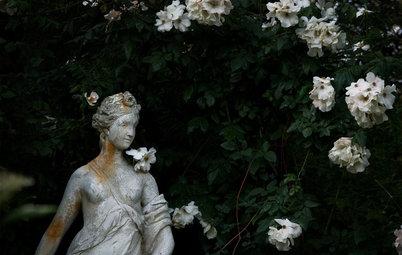 I Segreti delle Rose Che Fioriscono in Autunno