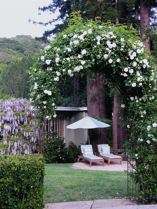 rose arbor photos