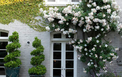 How to Make Your Brick House Feel at Home in the Landscape