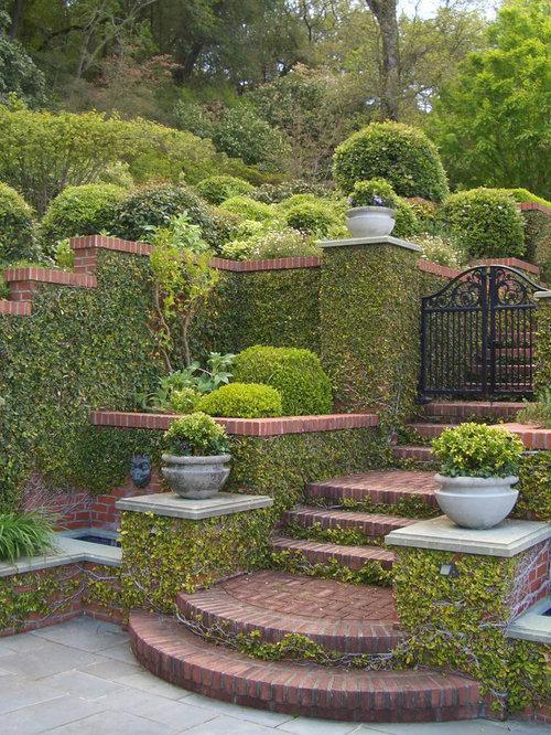 117 Best Indoor Garden Luv Images On Pinterest