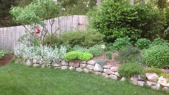 Roswell Backyard